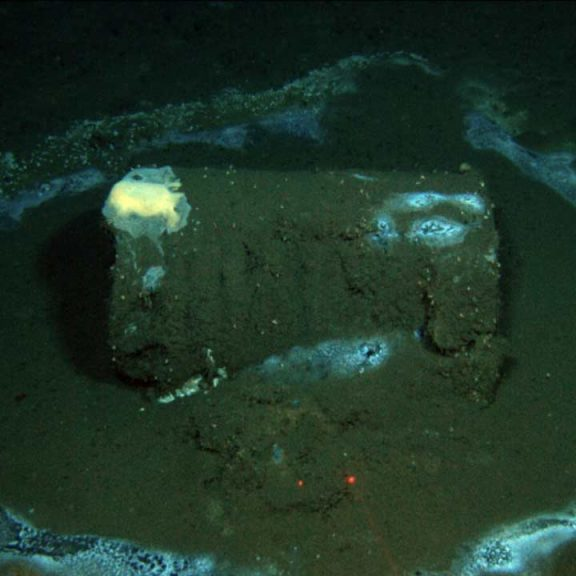 David Valentine captured this image of a barrel, which he later found to contain DDT, off the coast of California in 2011.Credit...David Valentine/U.C. Santa Barbara/RV Jason